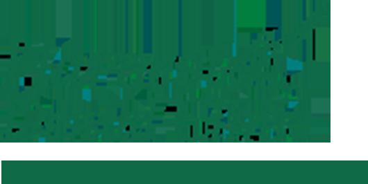 Harvest Dental Clinic ハーベストデンタルクリニック